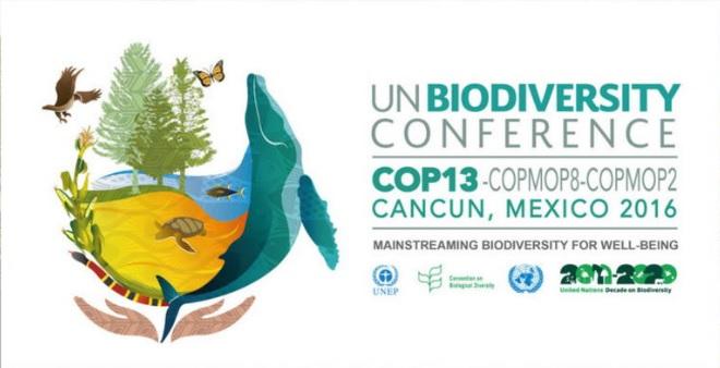 un-biodiversity-cancun