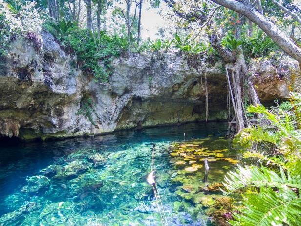 Gran Cenote, Tulum, Quintana Roo (Photo: Google)