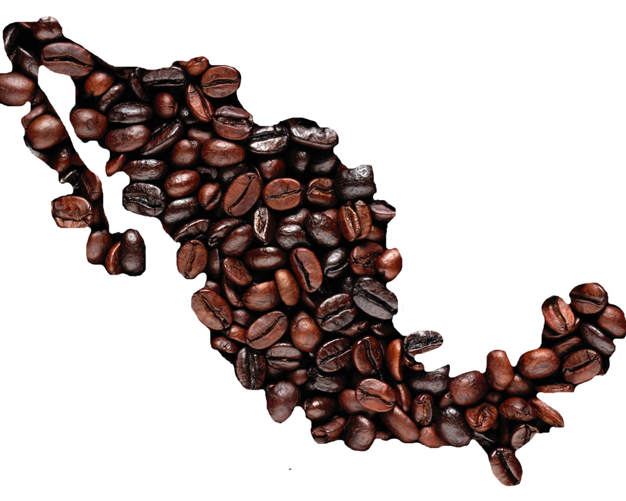 In The   Period Mexico Ranked Th Among The Largest Coffee Producers Worldwide With   Percent Of Global Production And Positioning Itself In